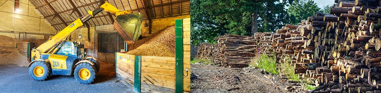 About Floors Forestry